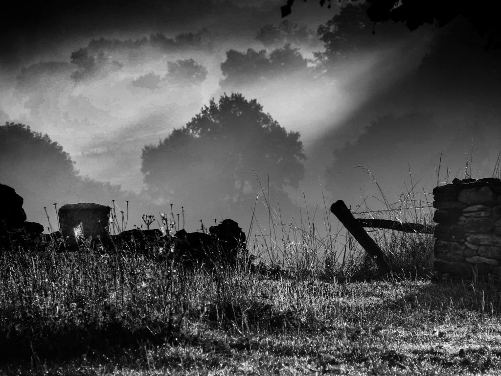 Photograph: Digital Photography Courses